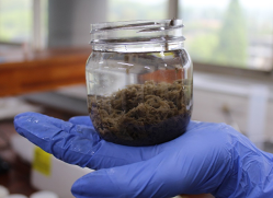 Bionanomaterial-based water & wastewater treatment technologies